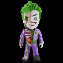MJ x DC Comics: Justice League XXRAY - The Joker - superchan.de